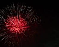 Красочные красные фейерверки с черной предпосылкой неба Стоковое Изображение