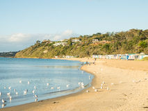 Красочные купая коробки в Mornington на полуострове Mornington Стоковые Изображения