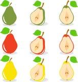 Красочные куски яблок, собрание иллюстраций Стоковое Изображение RF