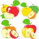Красочные куски яблок, собрание иллюстраций Стоковое Изображение