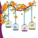 Красочные клетки птицы Стоковое Изображение