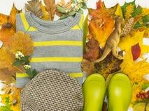 Красочные листья осени, ботинки дождя детей, свитер нашивки, шляпа косички, динозавры игрушки крупный план предпосылки осени крас Стоковое Изображение