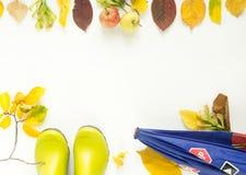 Красочные листья осени, яблоки, ягнятся ботинки дождя, зонтик детей крупный план предпосылки осени красит красный цвет листьев пл Стоковые Изображения RF