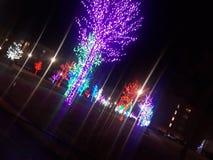 Красочные лучи стоковая фотография