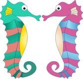 Красочные морские коньки Стоковое Изображение