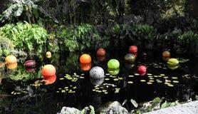 Красочные мраморы в пруде Стоковые Изображения