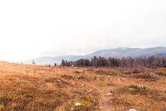 Красочные нежные холмы стоковые фото