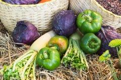 Красочные овощи осени и плодоовощи/сбор Стоковое Изображение