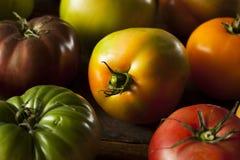 Красочные органические томаты Heirloom Стоковые Изображения