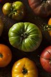 Красочные органические томаты Heirloom Стоковые Изображения RF