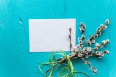 Красочные пастельные пасхальные яйца в шаре с чистым листом бумаги маркируют для tex Стоковые Фото