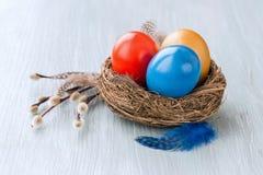 Красочные пасхальные яйца в малом гнезде, ветви вербы Стоковое Фото
