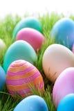 Красочные пасхальные яйца на зеленом Gass Стоковая Фотография RF