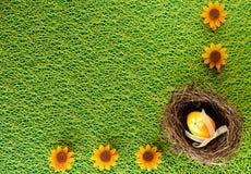 Красочные пасхальные яйца украшенные на предпосылке цвета Стоковое Фото
