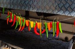 Красочные перцы chili вися на веревочке Стоковые Изображения