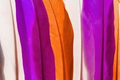 Красочные пер стоковое изображение rf
