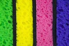 Красочные покрашенные губки на белой предпосылке Стоковые Изображения
