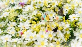 Красочные поддельные птицы среди искусственных белых цветков Стоковые Изображения RF