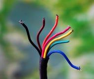 Красочные провода и крупный план кабелей, используемый в телекоммуникационной сети и электрических системах Стоковое фото RF