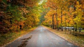 Красочные проселочные дороги в октябре стоковое изображение