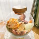 Красочные раковины в опарнике Стоковое Фото