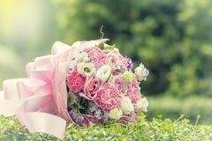 Красочные розы предпосылка разносторонности, малая глубина поля Стоковая Фотография RF