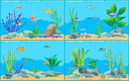 Красочные рыбы аквариума шаржа установили плакат Promo иллюстрация штока