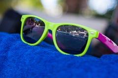 Красочные солнечные очки Стоковое фото RF