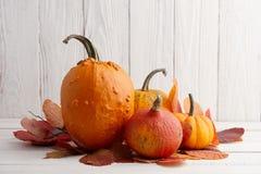 Красочные тыквы и тыквы на хеллоуин и благодарение Стоковые Фото