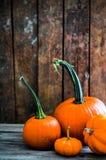 Красочные тыквы на деревянной предпосылке Стоковое Фото