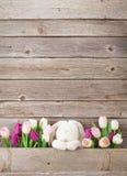 Красочные тюльпаны и кролик карточка пасха Стоковые Изображения RF