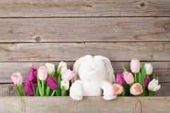 Красочные тюльпаны и кролик карточка пасха Стоковое Изображение