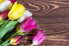 Красочные тюльпаны на деревянной предпосылке мати дня счастливые Время весны… подняло листья, естественная предпосылка Стоковая Фотография RF