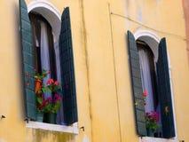 Красочные цветки в баках Венеции Windows Стоковое Изображение