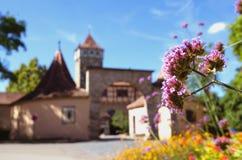 Красочные цветки на входе der Tauber ob Ротенбурга, Германии Стоковое Фото