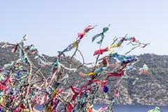Красочные шарфы повешены на ветвях дерева для oblation с голубой предпосылкой стоковая фотография rf