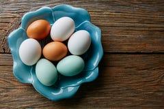 Красочные яичка в белых коричневых и голубых цветах Стоковые Фотографии RF