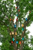 Красочные birdhouses на большом дереве концепция предохранения от природы стоковая фотография