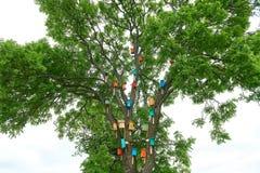 Красочные birdhouses на большом дереве концепция предохранения от природы стоковое изображение