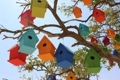 Красочные dovecotes на дереве Стоковое фото RF
