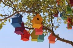 Красочные dovecotes на дереве Стоковые Фотографии RF