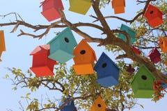 Красочные dovecotes на дереве Стоковая Фотография