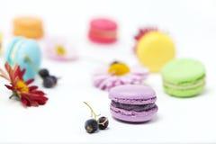 Красочные macaroons на белой предпосылке стоковая фотография