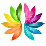 Красочный абстрактный флористический дизайн Стоковое Фото