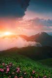 Красочный ландшафт в горах, перемещение Америки, мир красоты Стоковые Изображения RF