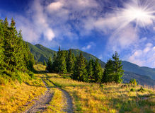 Красочный ландшафт лета в горах Стоковое фото RF