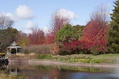 Красочный ландшафт на Cantigny с совершенными белыми облаками Стоковые Изображения RF