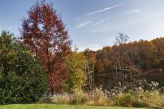 Красочный ландшафт осени с озером Стоковое Фото