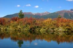 Красочный ландшафт реки горы Стоковая Фотография RF