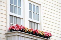 Красочный балкон цветочного горшка Стоковая Фотография
